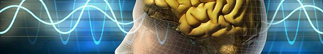 Science. Le Brain Forum montre comment la collaboration accélère la recherche