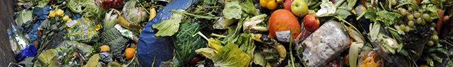 Environment. Next frontier in recycling: food