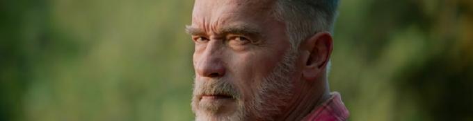 """Arnold Schwarzenegger """"Les politiciens de Washington restent à ne rien faire"""""""